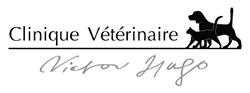 Clinique Vétérinaire Victor Hugo